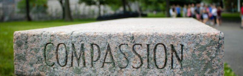 compasion-refugio-sufrimiento